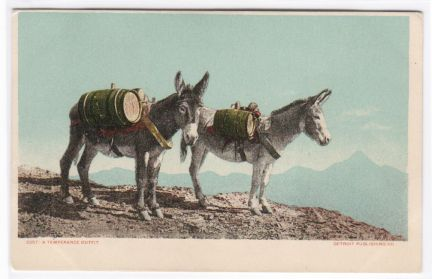 Old Post Card Donkeys Packing Barrels