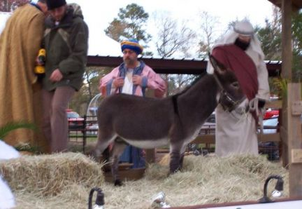 Mighty Small Wilbur in a Nativity scene float
